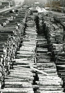 Holzumformplatz