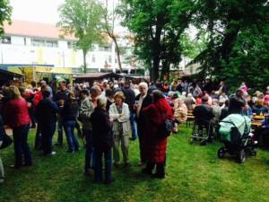 Parkfest8