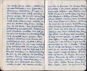 Tagebuchauszug  Frau Zschaeck