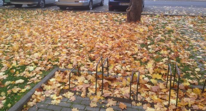 Herbst in Hildburghausen